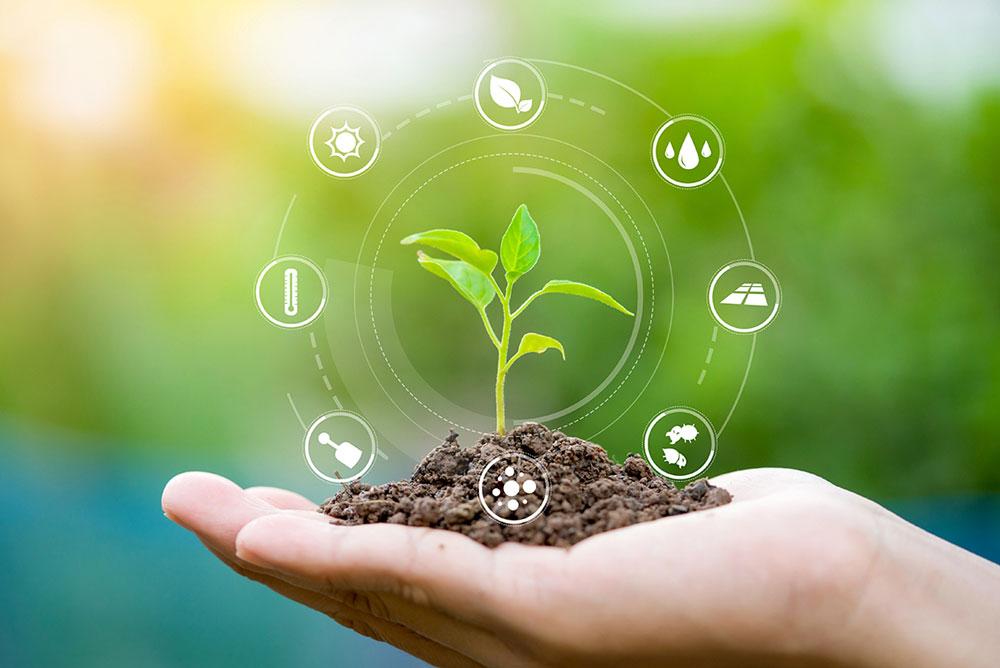 protezioni per piante