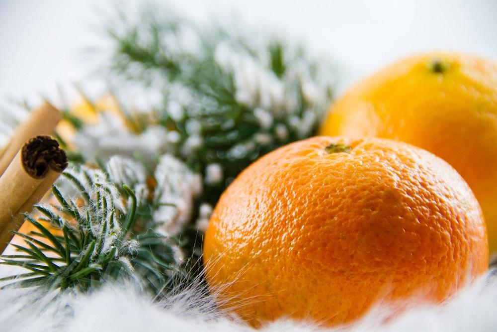 Frutta di stagione per le vacanze di Natale | Tubex Italia