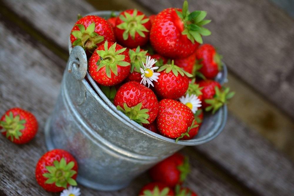 Frutta estiva: cosa si raccoglie in estate? | Tubex Italia
